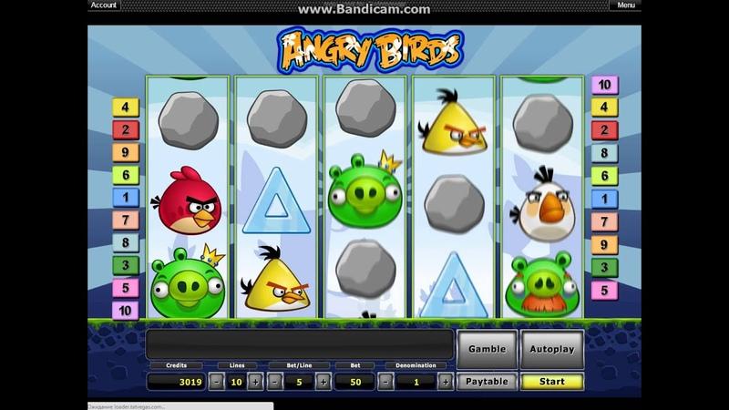 Angry Birds, Лудовод в Tat Vegas Casino от Chekist