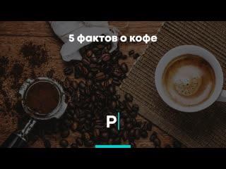 5 фактов о кофе