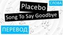 Placebo - Song To Say Goodbye Перевод песни на русский Текст Слова