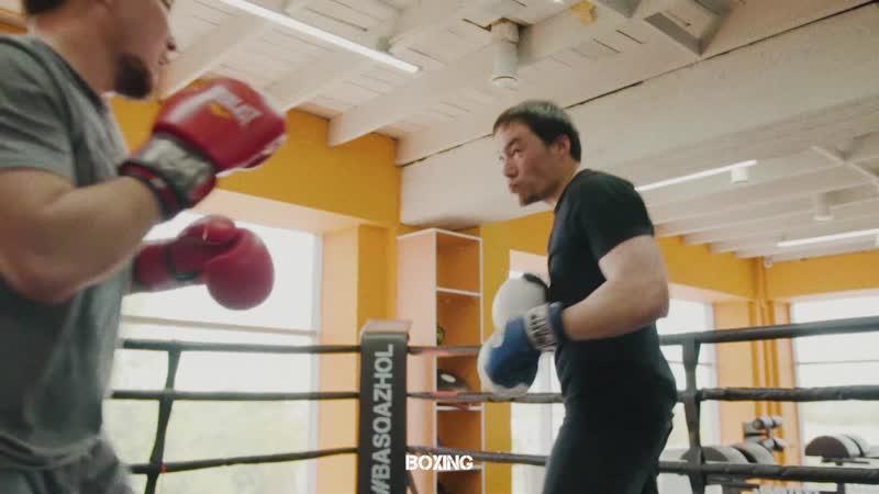 Бокс в Шымкенте для детей и взрослых BASQAZHOL
