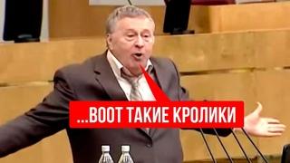 ВОЛФЫЧ КРАСАВА! Жириновский отжигал на заседании у путина