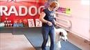Выставка собак в городе Петрозаводск