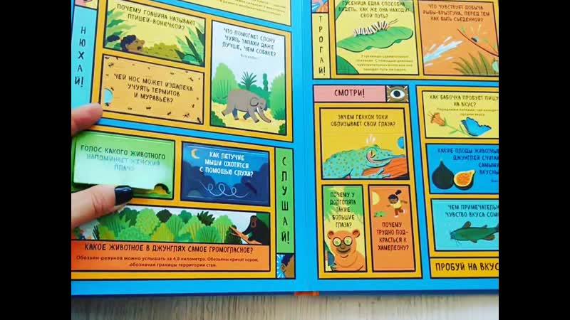 джунгли с окошками 70 окошек 100 вопросов и ответов
