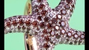 Sunning Starfish Ring ✨ Visualization - Render