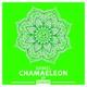 Shmel - Chamaeleon