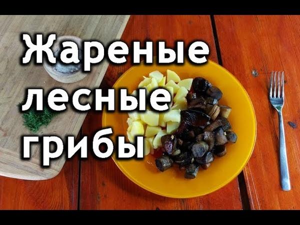 Как приготовить жареные грибы подосиновики подберезовики боровики лисички рецепт