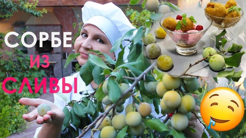 Летомвместе Сорбет из сливы П П Рецепт Простой рецепт Заморозка Мороженое Десерт