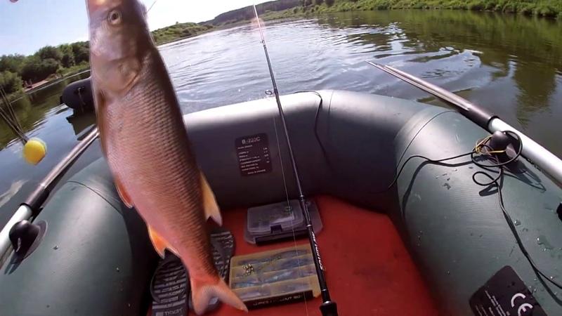 26 27 июня река Дон Загораем Попытка поймать белого хищника в жару
