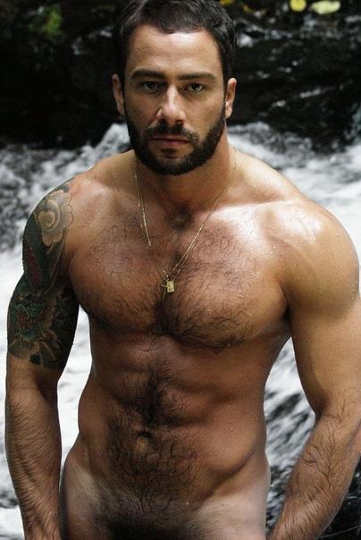 Pin On Hot Hairy Men
