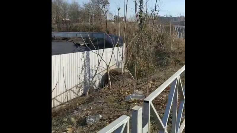 Вот ещё немного Краснодара, вернее его худшей стороны. Мэра и губернатора пора в отставку Два бездельника