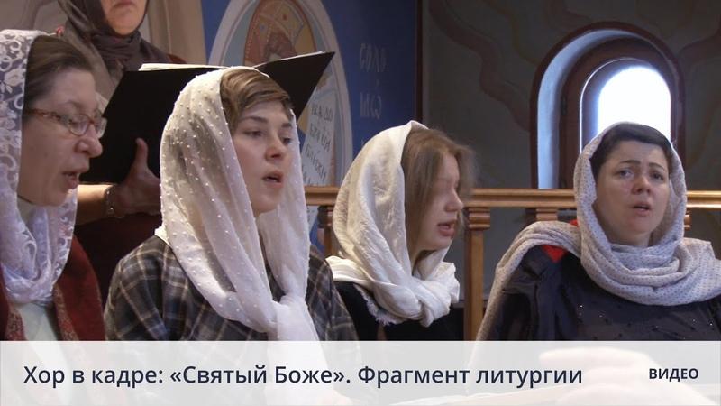 Хор в кадре Святый Боже Фрагмент литургии