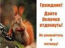 Фотоальбом Алексея Белкина