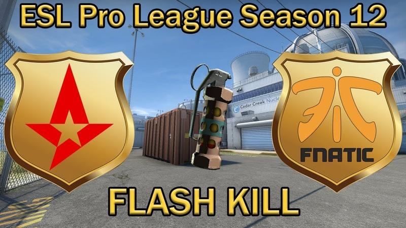 УБИЛИ ФЛЕШКОЙ es3tag FLASH grenade KILL KRIMZ Astralis vs Fnatic Nuke ESL Pro League 12