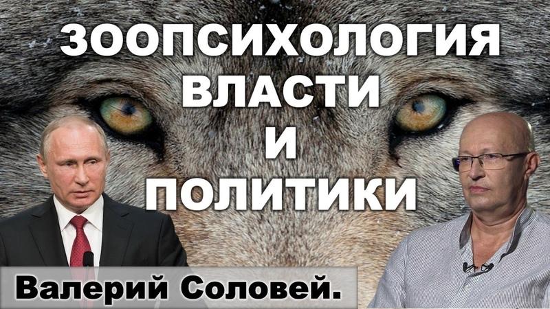 Валерий Соловей о тревожности Путина Процесс пошёл