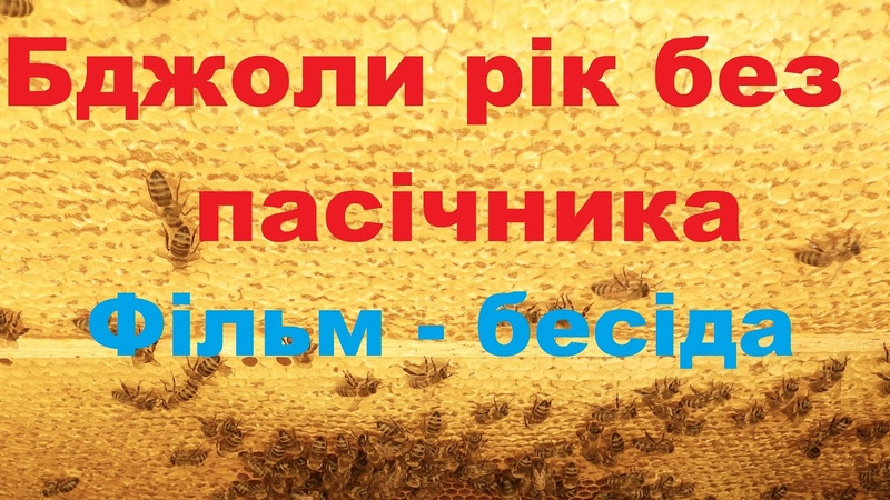 Бджоли рік без пасічника Фільм бесіда Пасіка діда Євгена
