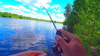 БЕЗОТКАЗНЫЕ ОСНАСТКИ в летнюю жару! Рыбалка на озере! Ловля краснопёрки и окуня на спиннинг!