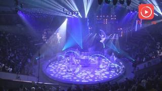 Трёхчасовое шоу под продолжительные овации: в Твери состоялась премьера «Королевского цирка»