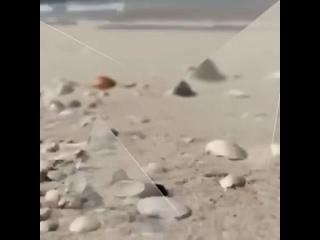 Видео от Светы Тур