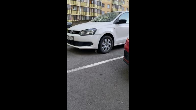 Видео от Яны Гулиевой