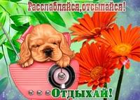 фото из альбома Кати Красильниковой №6