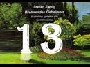 13. Erste Einsicht первое понимание/Brennendes Geheimnis/S. Zweig/