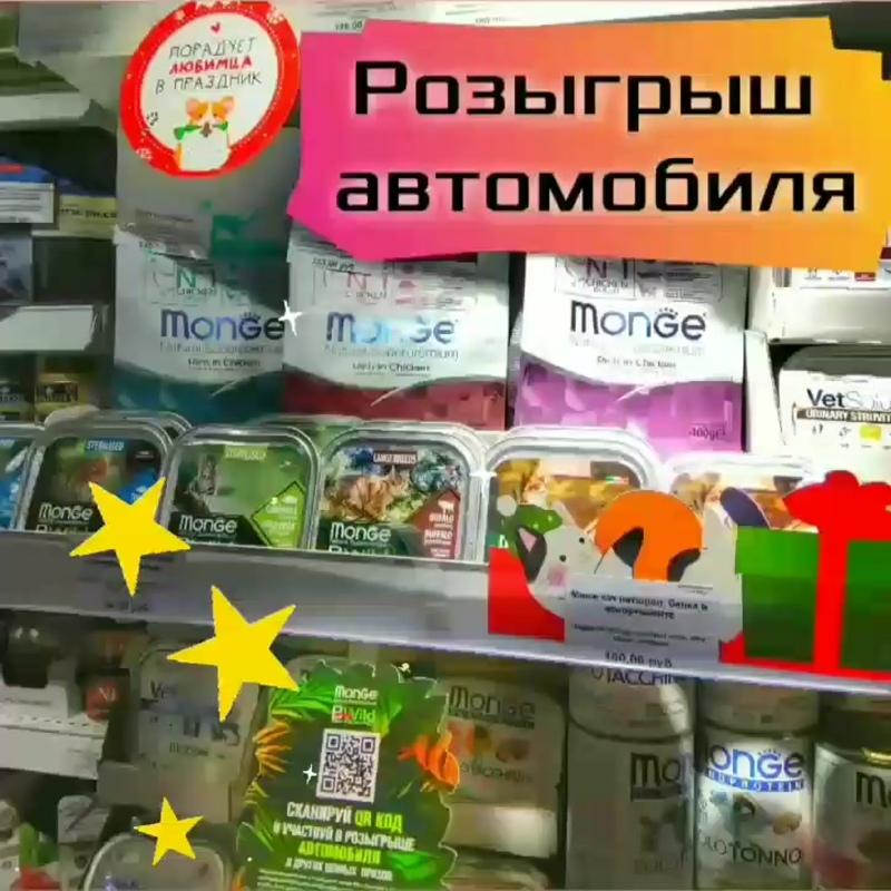 VID_183550410_173056_172.mp4