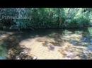 Тысяча 1000 летних подводных лингамов в Камбодже Гора Пном Кулен