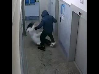 В Красноярске мужик заскочил вместе с девушкой в подъезд, кинул её на пол и стал избивать.