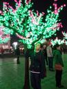 Персональный фотоальбом Perizat Misirbekova