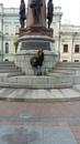 Шпритула Наталья   Одесса   36