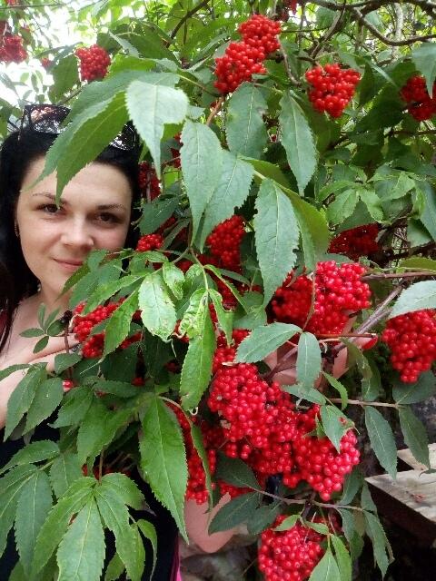 фото из альбома Анны Міщенко №1