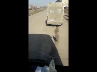 6) водителя белого микроавтобуса, ГРНЗ 302 SWA 09, который  г., в 10 ч.10 м., на остановке «Аврора», нелегально взял н