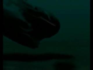 """ДДТ - Капитан Колесников (Посвящение АПЛ""""Курск"""")"""