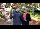 Jamie Lee Curtis Wins Scream Queen Award