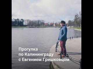 Калининград глазами драматурга