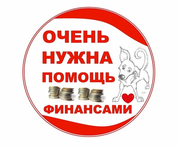 Куратор Александра Полойко https://vk.com/id1225452 тел. 8 950 995 05 989