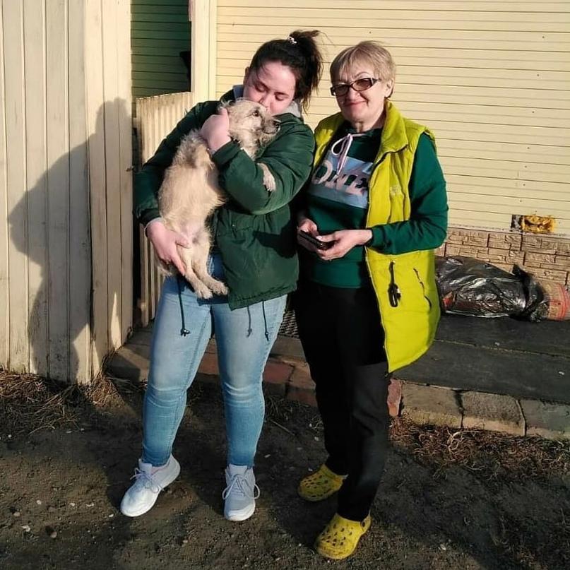 Невероятно трогательной историей поделился фонд «Собака счастья». Пёс, которого...