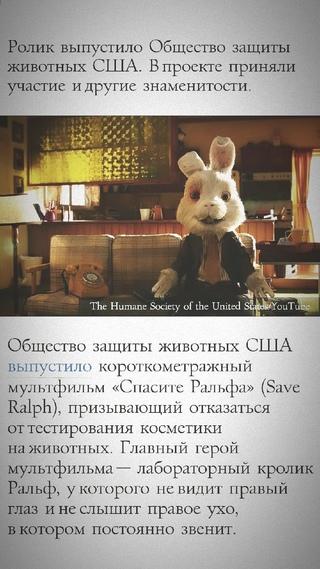 Алена Сафонова фотография #6