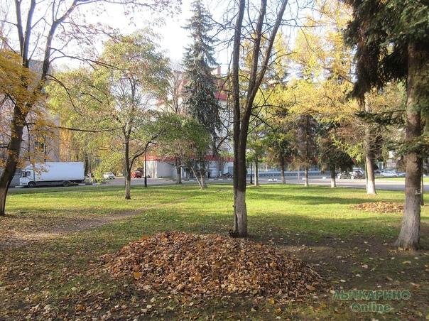Зачем у нас в городе по осени листья сгребают в ку...