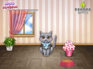 Мой котенок
