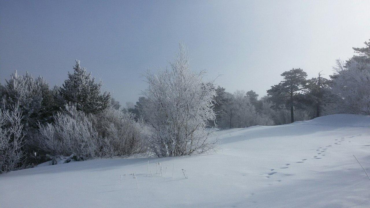 Вот такая ❄сказочно-зимняя, красивая, яркая весна в сосновом бору! Северодвинск, о. Ягры❤ 📷Людмила Хабарова