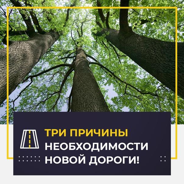 🛣 Классика во-волгоградски: строить или не строить...