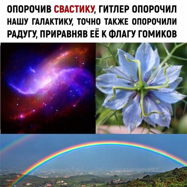 https://sun9-3.userapi.com/impg/ggysp0iXjsQAUldLGJO9a6ON8DAkkIzBVq4HjQ/bymznn2lksM.jpg?size=604x604&quality=96&sign=0cd04ef07c8ae121ed5968f11606ad1d&type=album