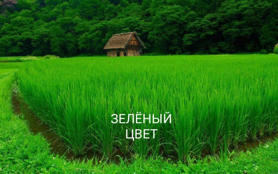 Зеленая нитка ДЕНЬГИ NU8PVDVpEf8