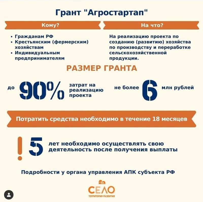 Заявки двух петровчан прошли предварительный отбор на получение грантов «Агростартап»