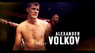 Лучший тяжеловес в мире - Александр Волков