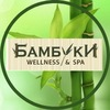 Спа Центр Бамбуки    Wellness&Spa