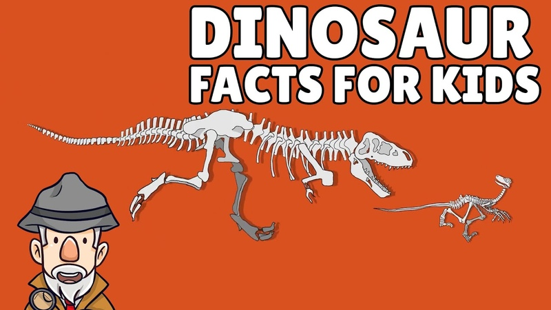 Top 10 Dinosaur Facts Dinosaur Facts for Kids
