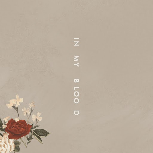 Shawn Mendes альбом In My Blood