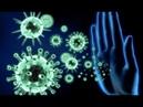 У кого есть иммунитет к болезням? Экстрасенс, парапсихолог, медиум Елена Парецкая
